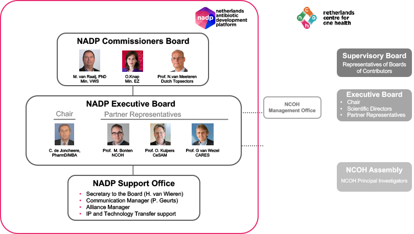NADP Governance  and organisational embedding in NCOH.